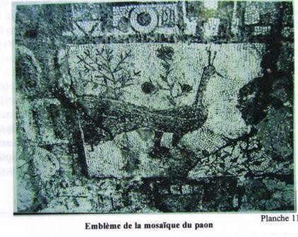histoire,mogador