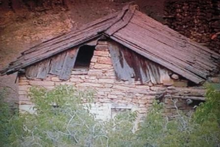 maison en bois de cèdre.JPG