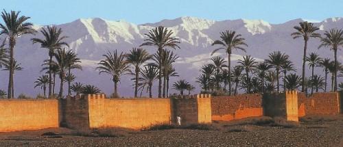 marrakech-palmier-neige.jpg